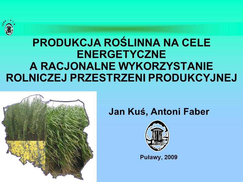 Jan Kuś, Antoni Faber Puławy, 2009