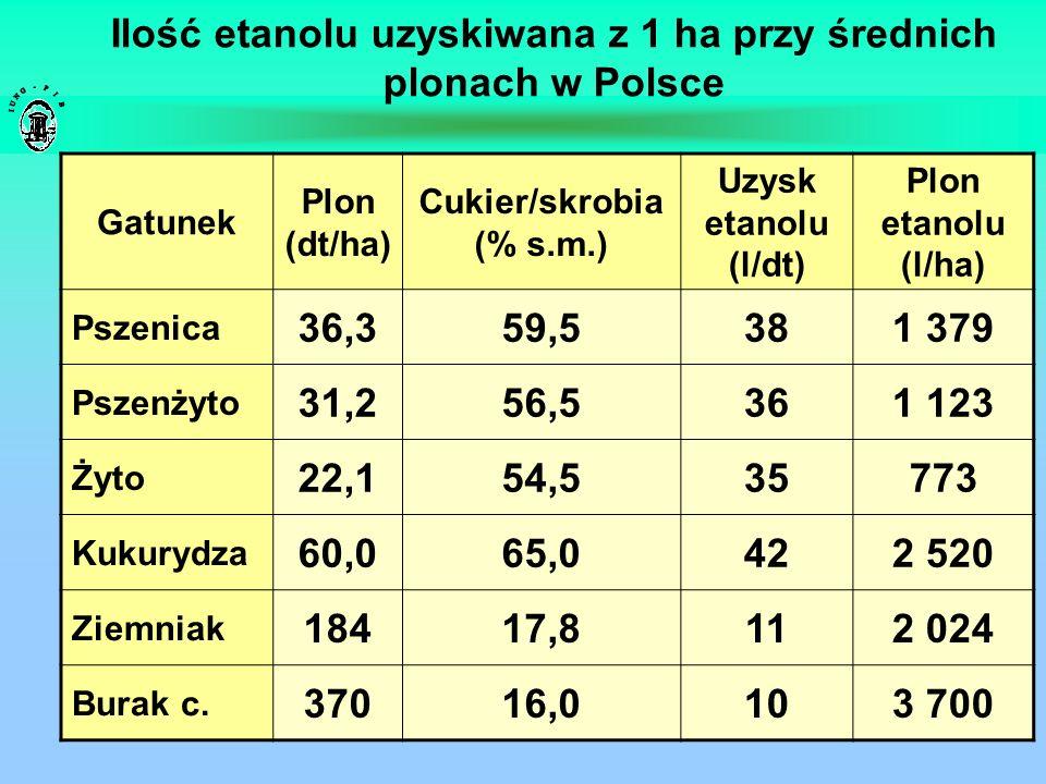 Ilość etanolu uzyskiwana z 1 ha przy średnich plonach w Polsce