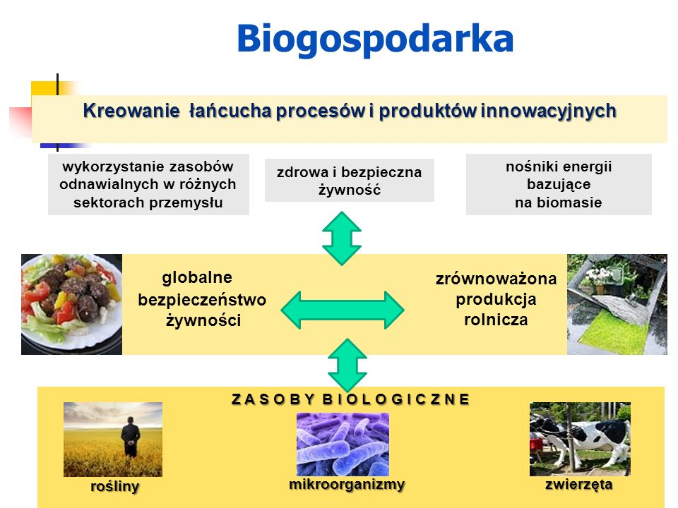 Biogospodarka globalne