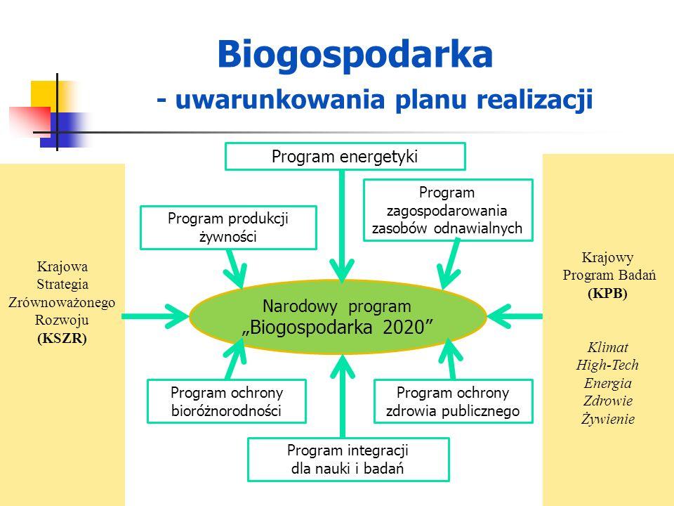 Biogospodarka - uwarunkowania planu realizacji