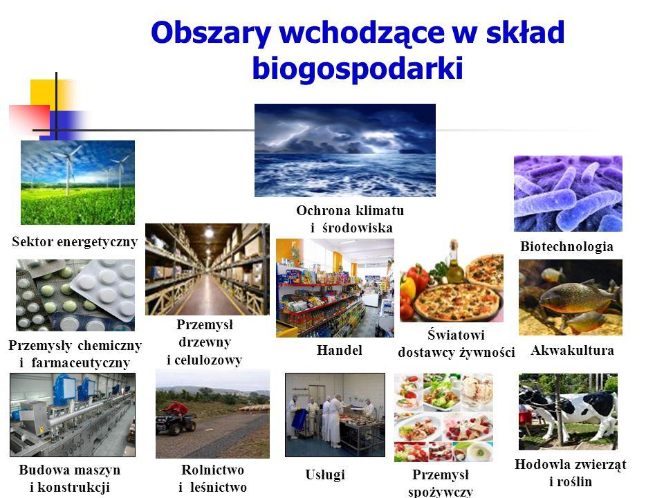 Obszary wchodzące w skład biogospodarki