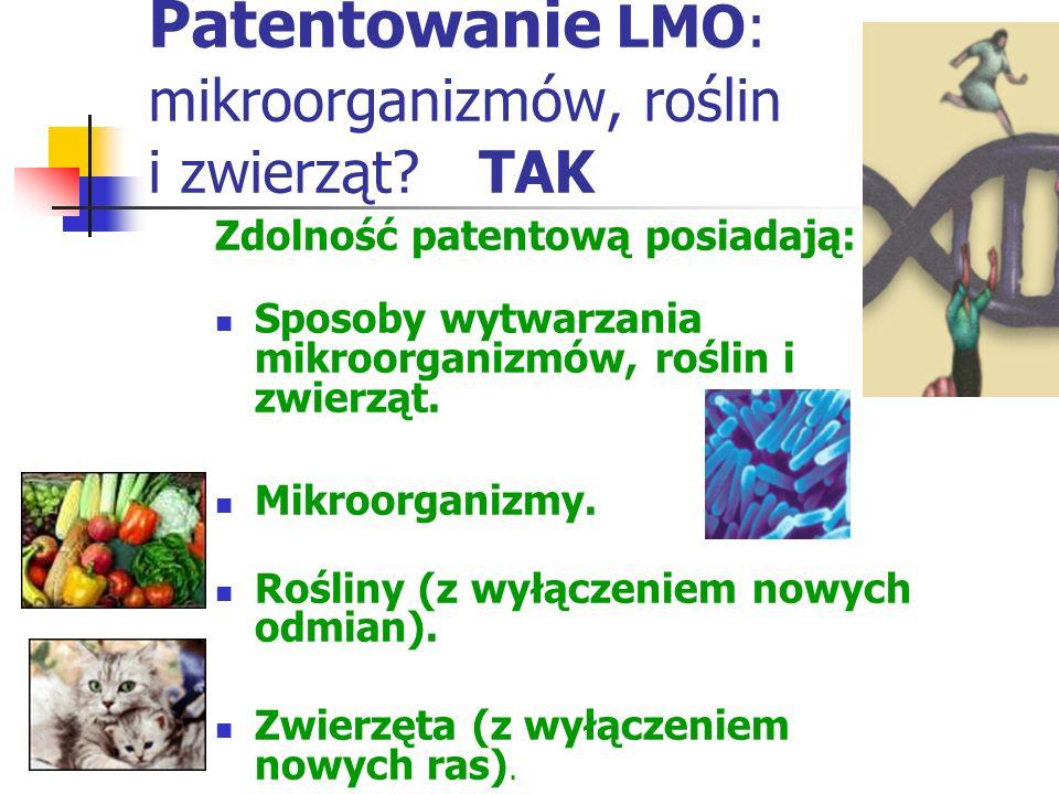 Patentowanie LMO: mikroorganizmów, roślin i zwierząt TAK