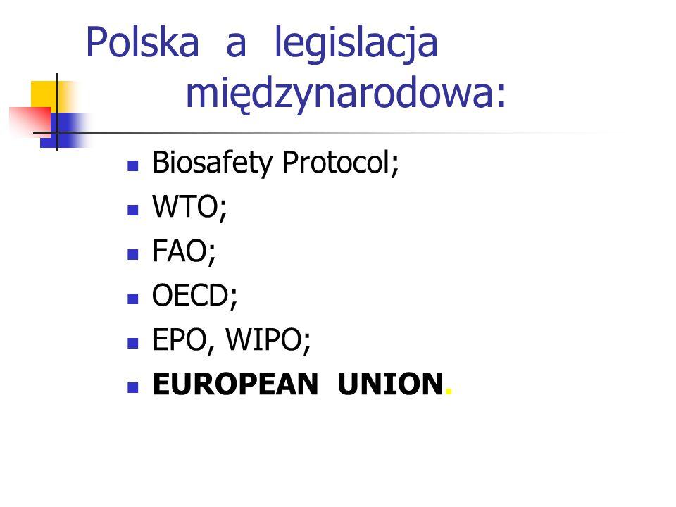 Polska a legislacja międzynarodowa: