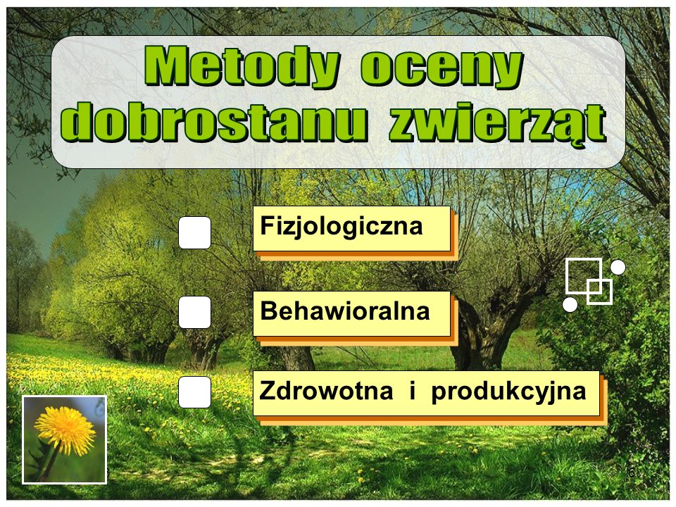 Metody oceny dobrostanu zwierząt Fizjologiczna Behawioralna