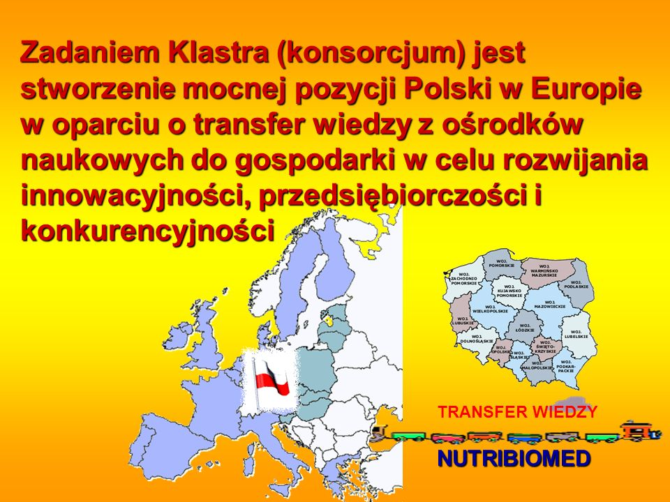 Zadaniem Klastra (konsorcjum) jest stworzenie mocnej pozycji Polski w Europie w oparciu o transfer wiedzy z ośrodków naukowych do gospodarki w celu rozwijania innowacyjności, przedsiębiorczości i konkurencyjności