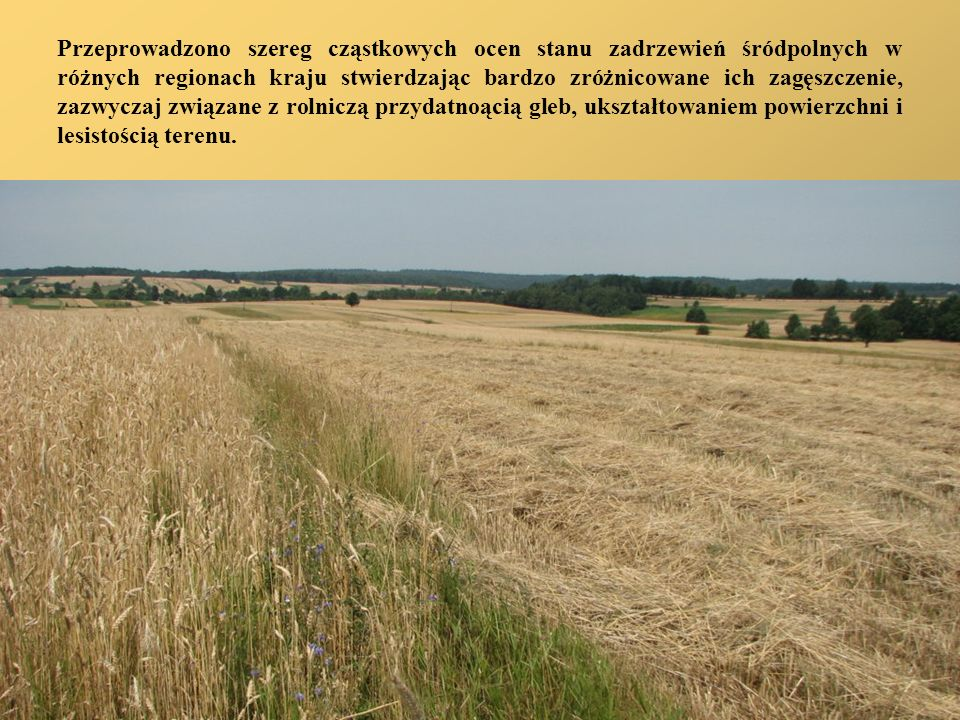 Przeprowadzono szereg cząstkowych ocen stanu zadrzewień śródpolnych w różnych regionach kraju stwierdzając bardzo zróżnicowane ich zagęszczenie, zazwyczaj związane z rolniczą przydatnoącią gleb, ukształtowaniem powierzchni i lesistością terenu.