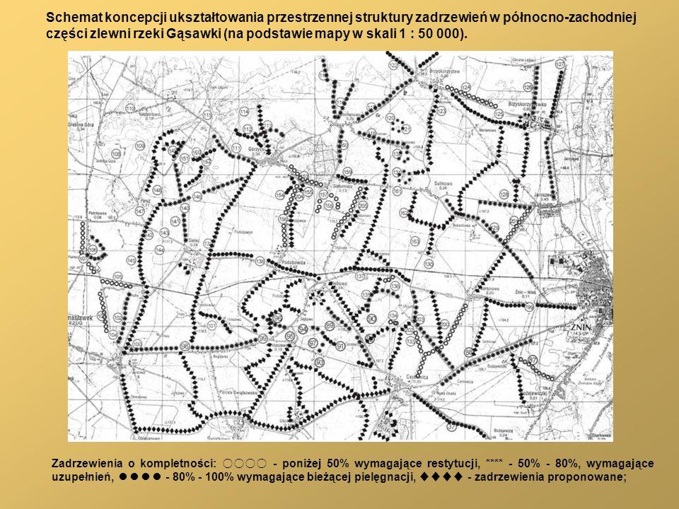 części zlewni rzeki Gąsawki (na podstawie mapy w skali 1 : 50 000).