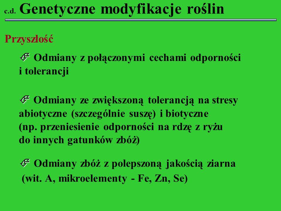 Genetyczne modyfikacje roślin