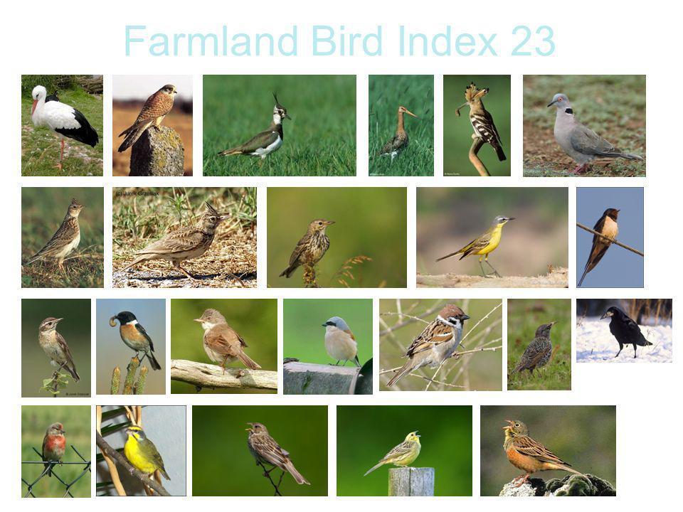 Farmland Bird Index 23
