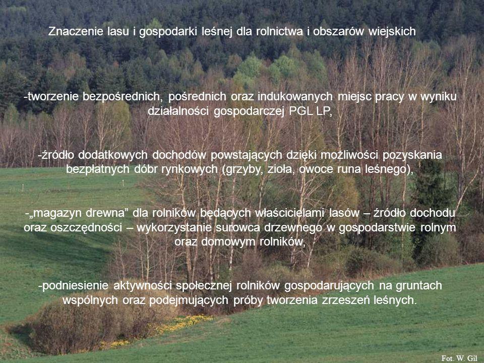 Znaczenie lasu i gospodarki leśnej dla rolnictwa i obszarów wiejskich