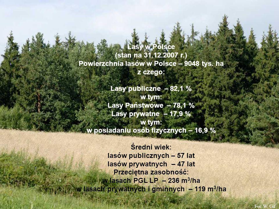 Powierzchnia lasów w Polsce – 9048 tys. ha z czego: