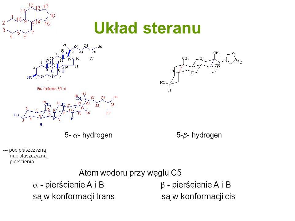 Układ steranu Atom wodoru przy węglu C5