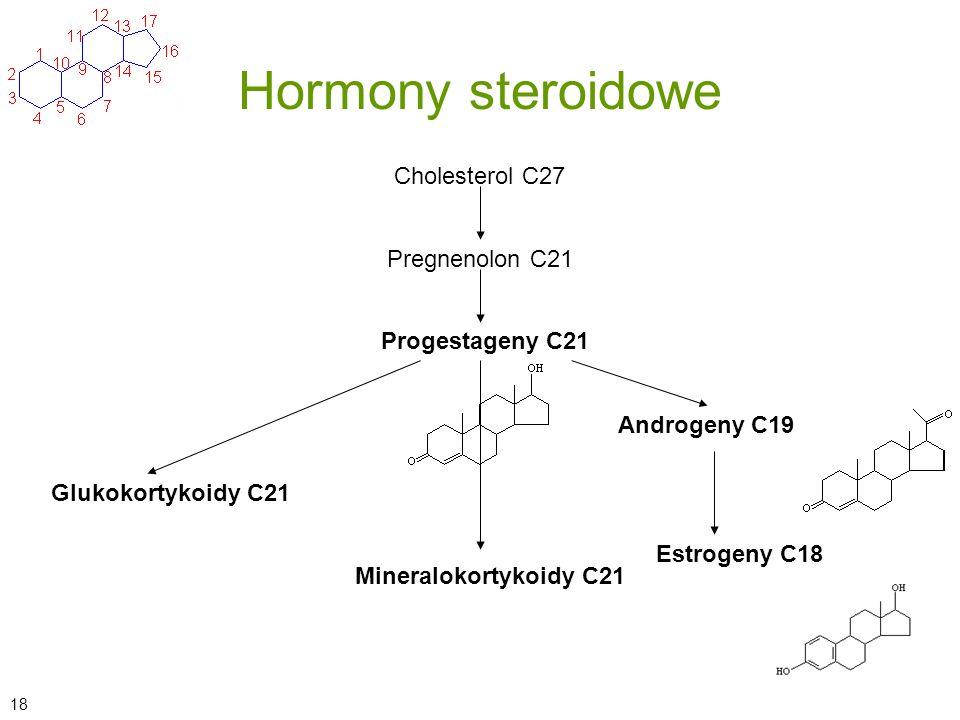 Hormony steroidowe Cholesterol C27 Pregnenolon C21 Progestageny C21