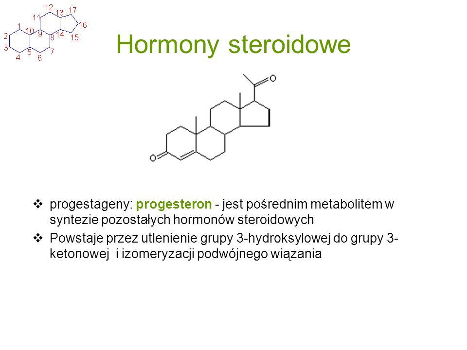 Hormony steroidowe progestageny: progesteron - jest pośrednim metabolitem w syntezie pozostałych hormonów steroidowych.