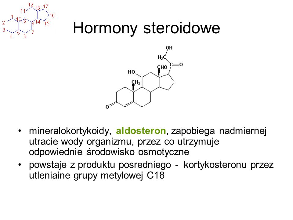 Hormony steroidowe mineralokortykoidy, aldosteron, zapobiega nadmiernej utracie wody organizmu, przez co utrzymuje odpowiednie środowisko osmotyczne.