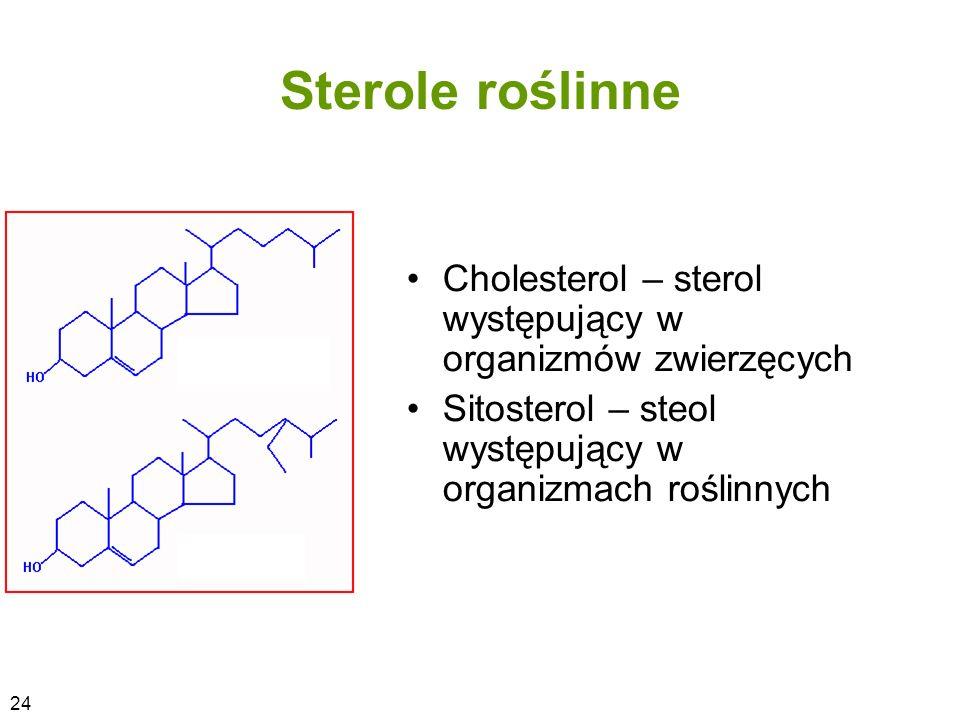 Sterole roślinne Cholesterol – sterol występujący w organizmów zwierzęcych. Sitosterol – steol występujący w organizmach roślinnych.