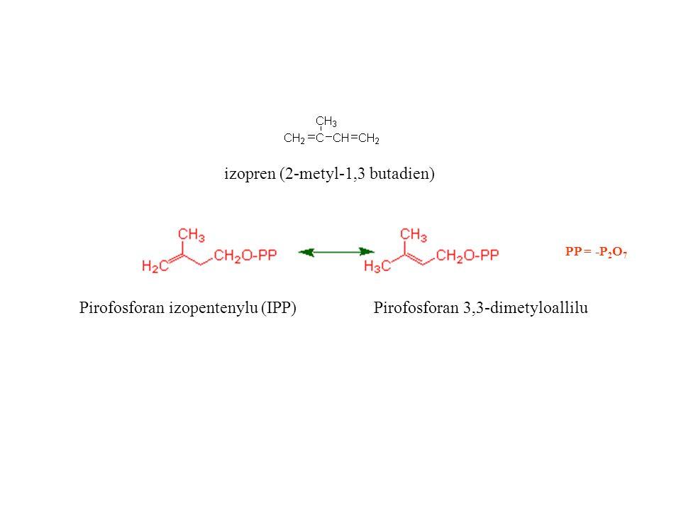 izopren (2-metyl-1,3 butadien)