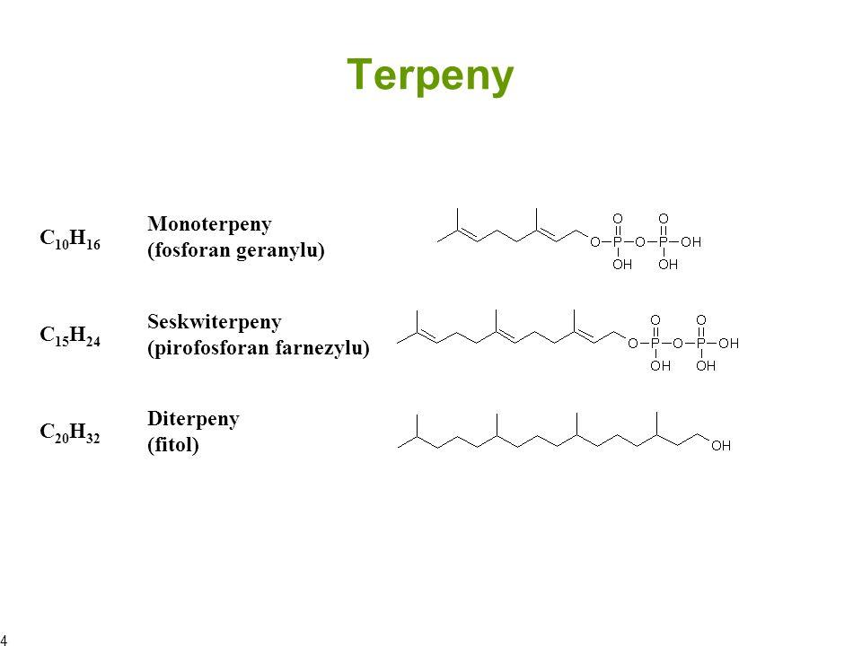 Terpeny Monoterpeny C10H16 (fosforan geranylu) Seskwiterpeny C15H24