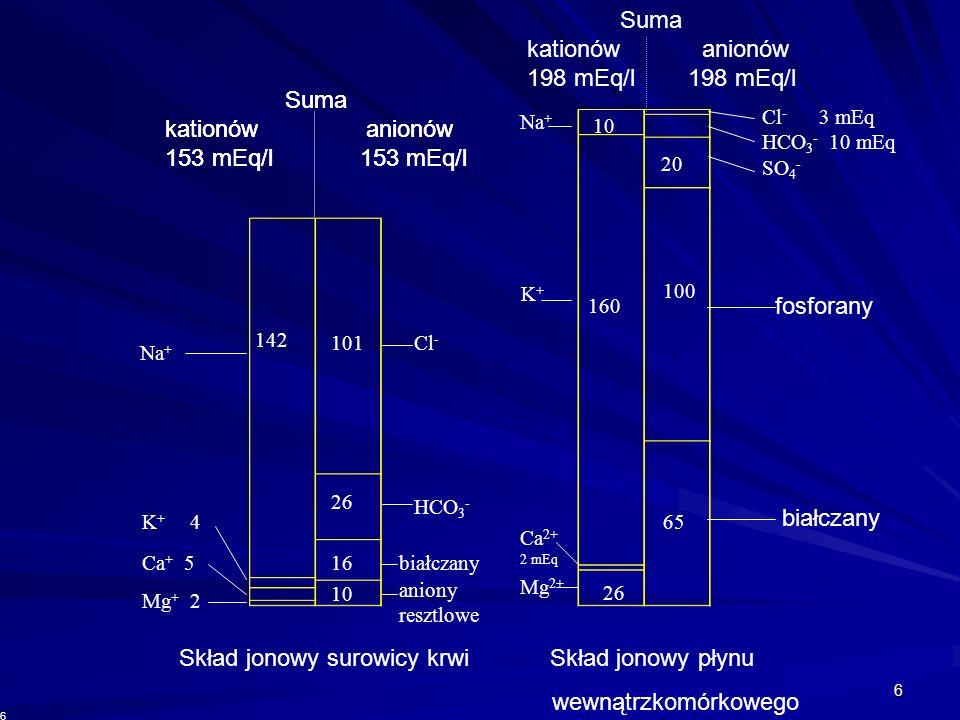 Skład jonowy surowicy krwi Skład jonowy płynu wewnątrzkomórkowego