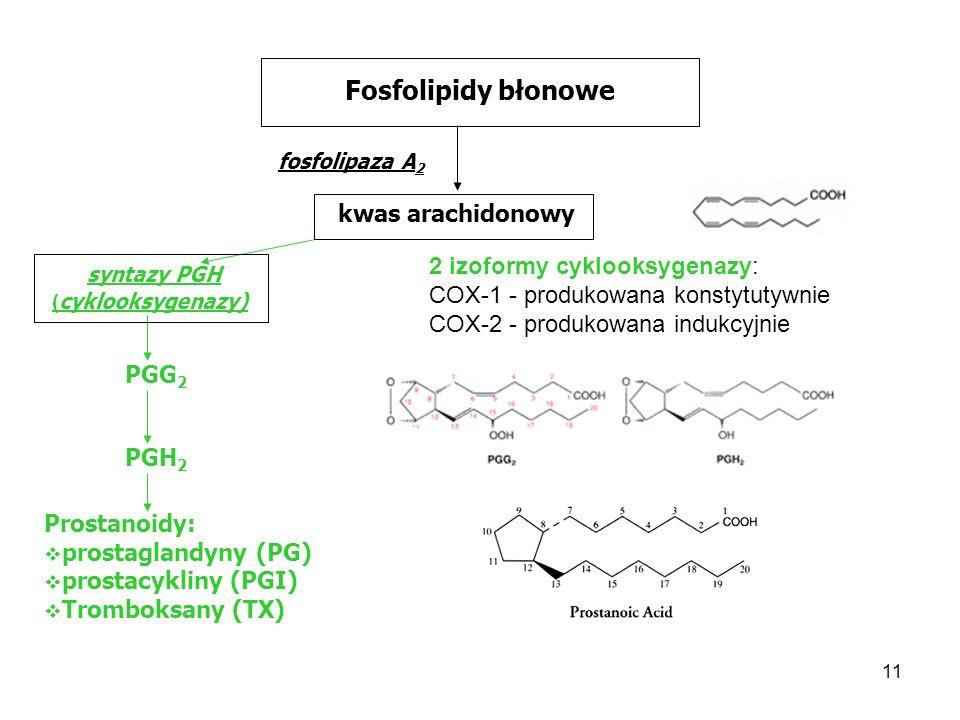 Fosfolipidy błonowe kwas arachidonowy 2 izoformy cyklooksygenazy: