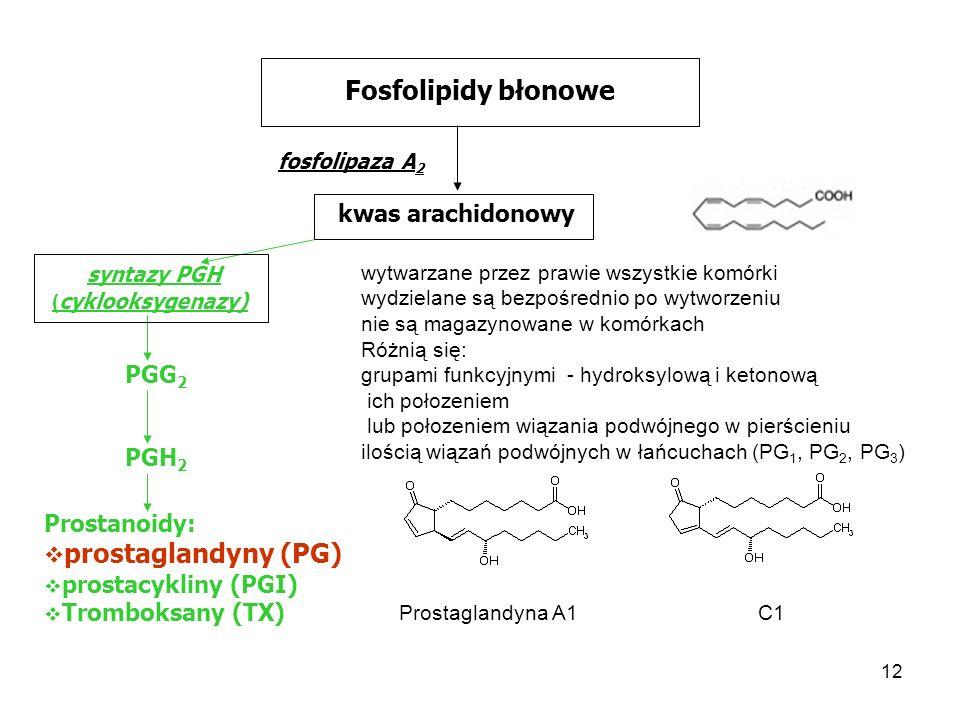 Fosfolipidy błonowe prostaglandyny (PG) kwas arachidonowy syntazy PGH