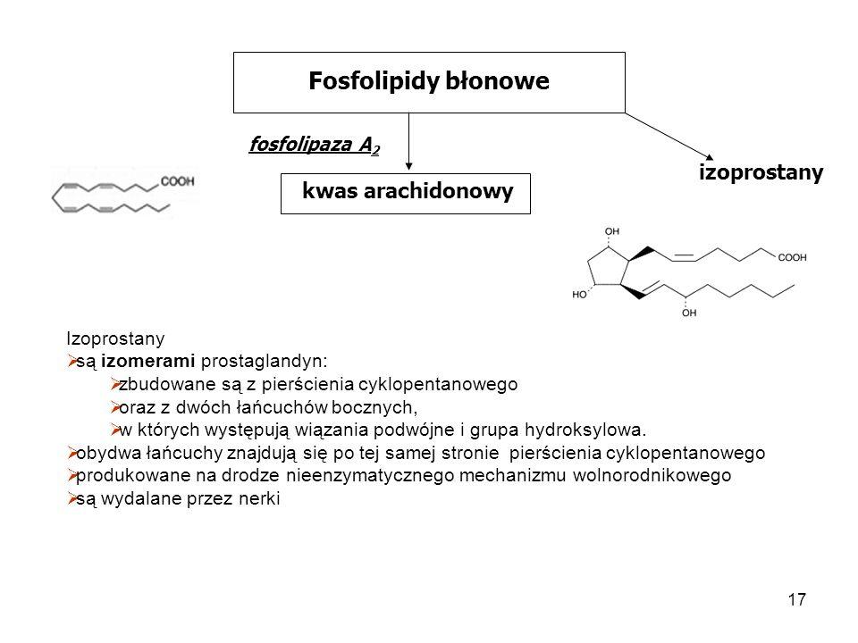 Fosfolipidy błonowe izoprostany kwas arachidonowy fosfolipaza A2