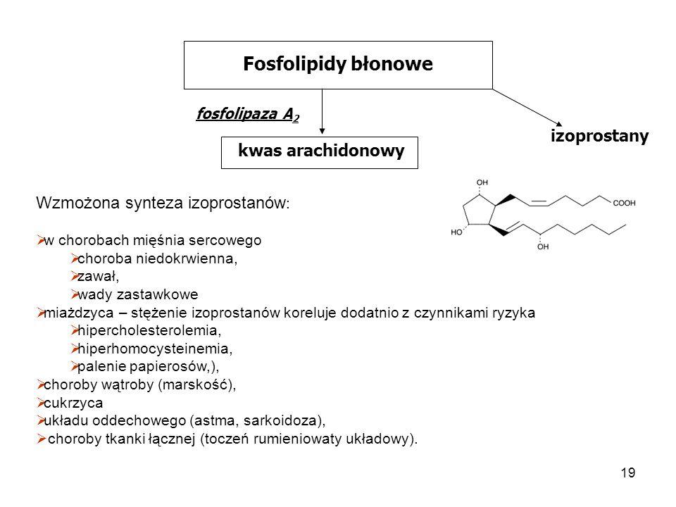 Fosfolipidy błonowe izoprostany kwas arachidonowy