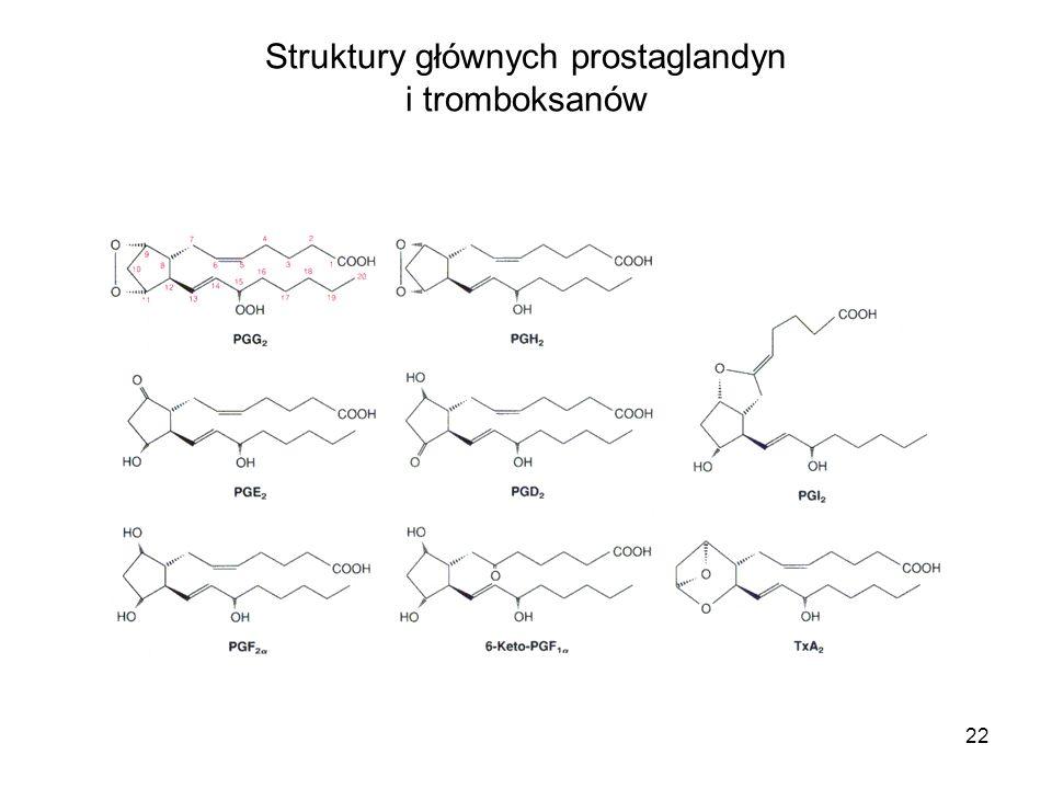 Struktury głównych prostaglandyn i tromboksanów