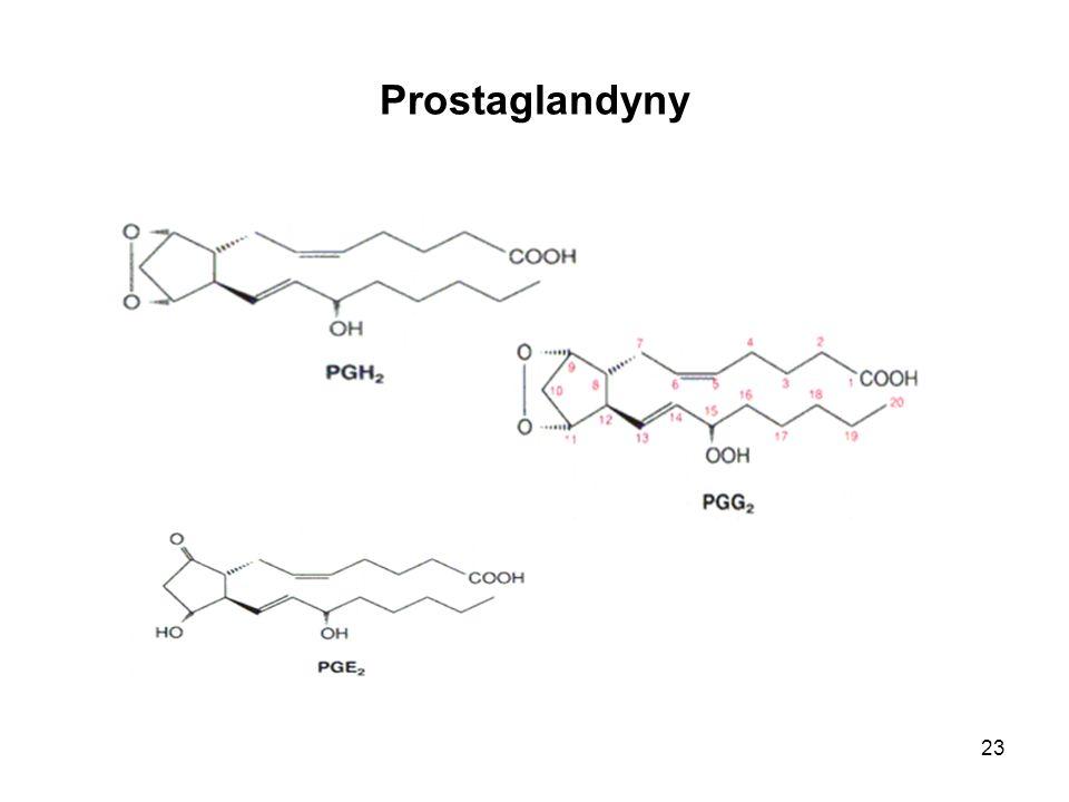 Prostaglandyny
