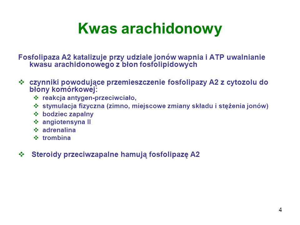 Kwas arachidonowy Fosfolipaza A2 katalizuje przy udziale jonów wapnia i ATP uwalnianie kwasu arachidonowego z błon fosfolipidowych.