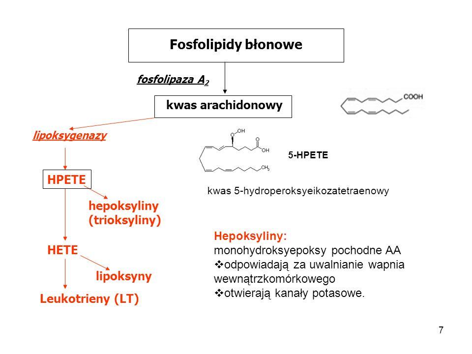 Fosfolipidy błonowe kwas arachidonowy HPETE hepoksyliny (trioksyliny)