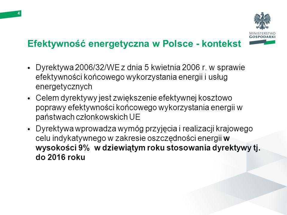 Efektywność energetyczna w Polsce - kontekst