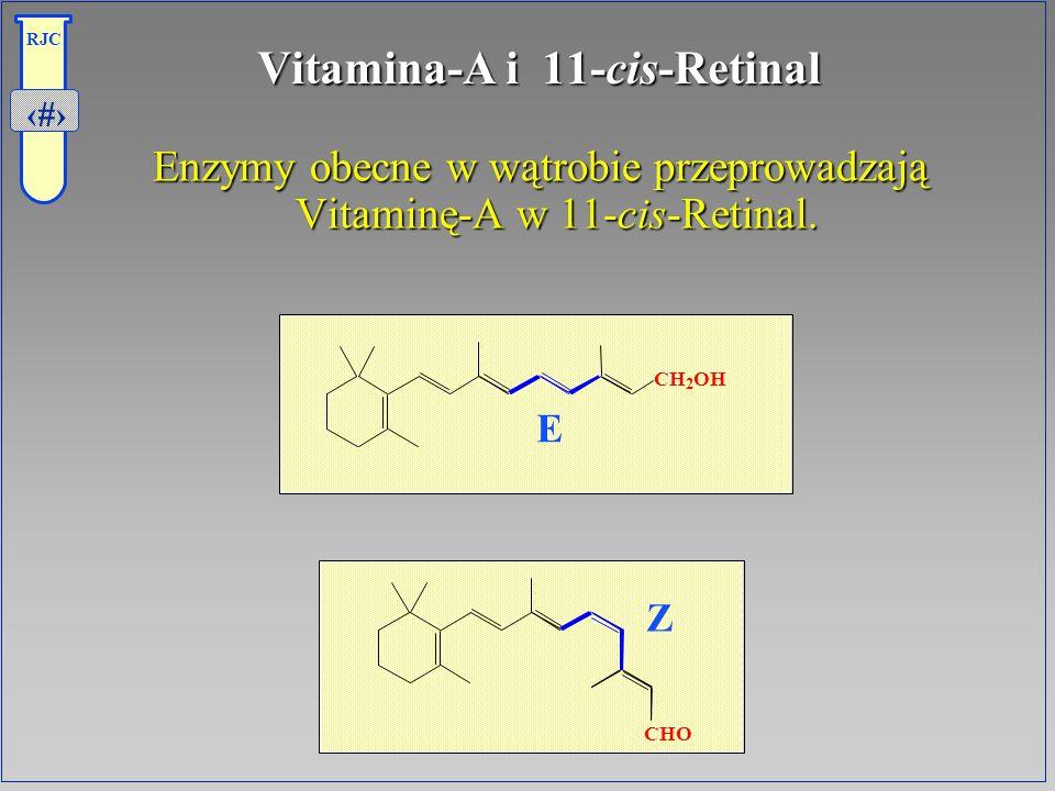 Vitamina-A i 11-cis-Retinal