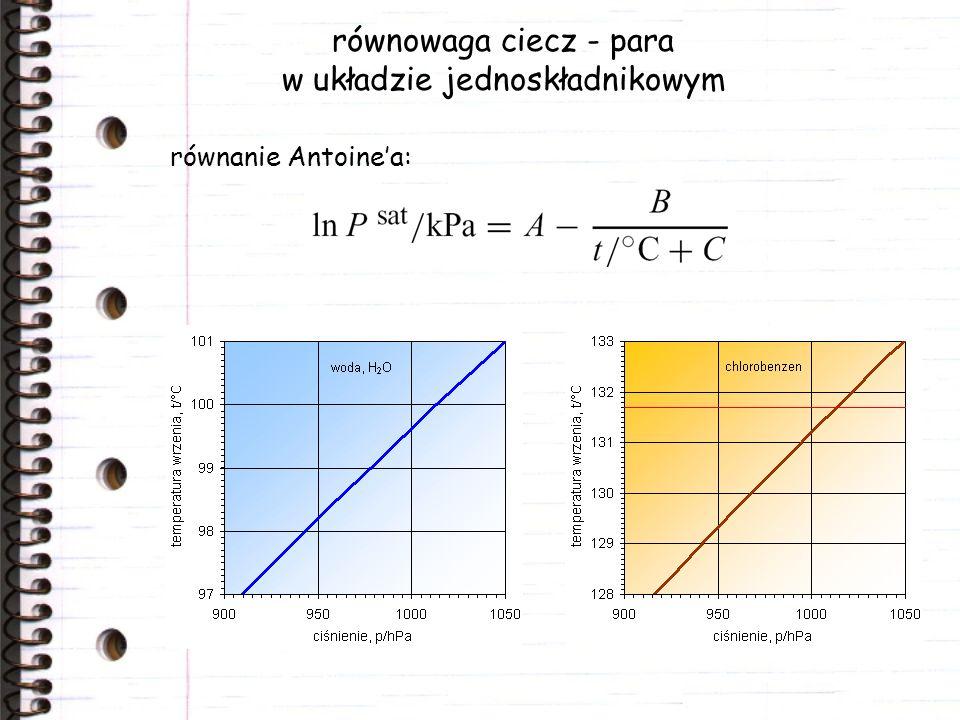 równowaga ciecz - para w układzie jednoskładnikowym