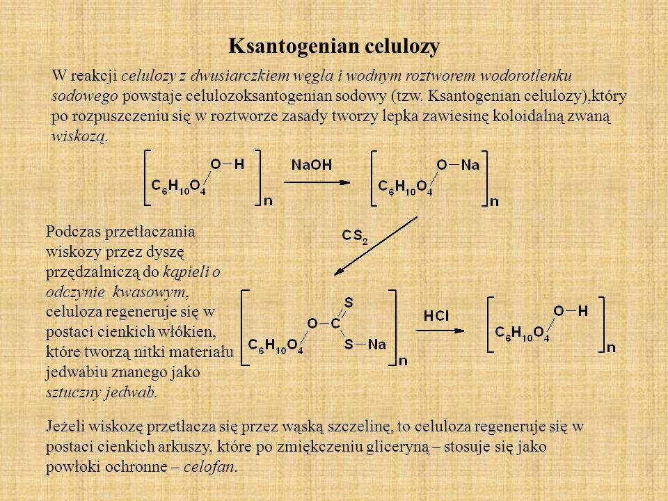 Ksantogenian celulozy