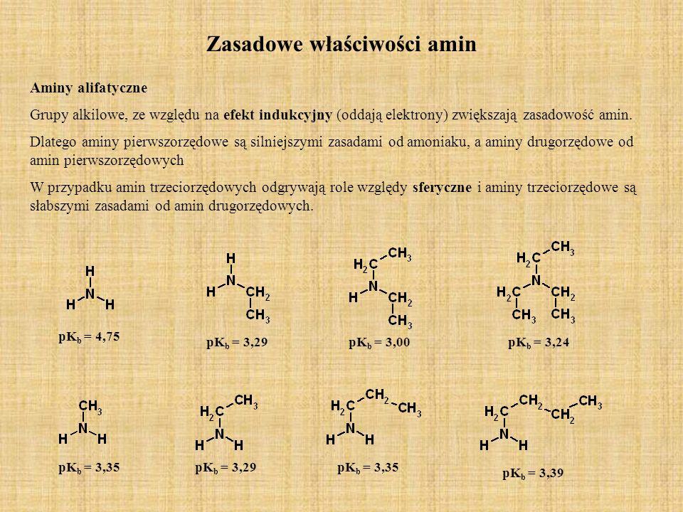 Zasadowe właściwości amin