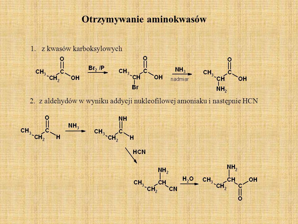 Otrzymywanie aminokwasów