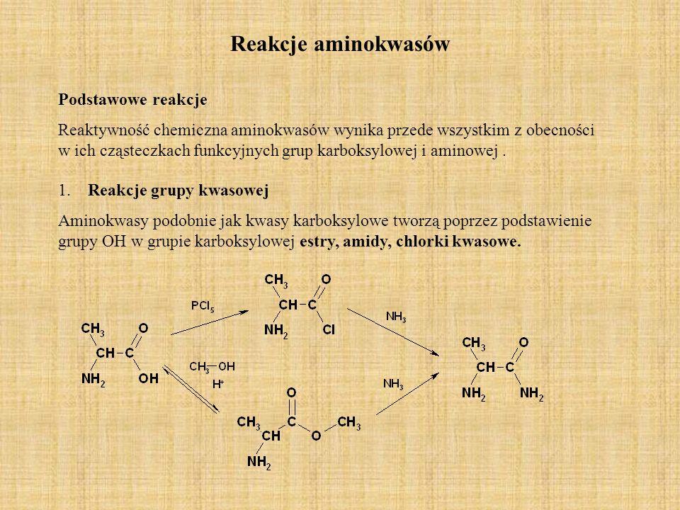 Reakcje aminokwasów Podstawowe reakcje