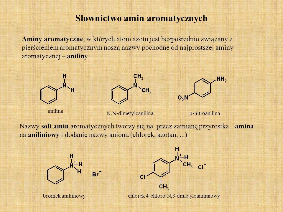 Słownictwo amin aromatycznych