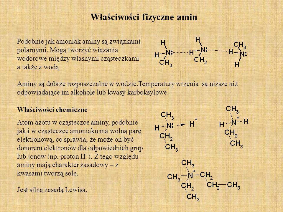 Właściwości fizyczne amin