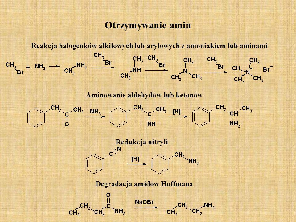Otrzymywanie amin Reakcja halogenków alkilowych lub arylowych z amoniakiem lub aminami. Aminowanie aldehydów lub ketonów.