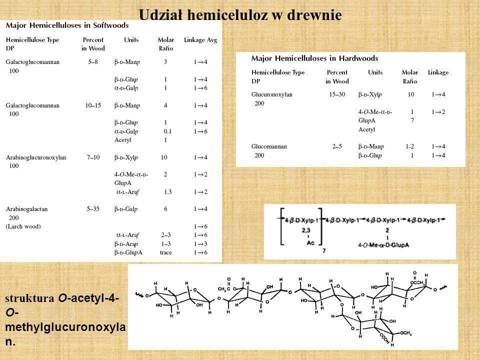 Udział hemiceluloz w drewnie