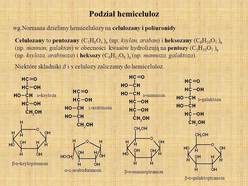 Podział hemiceluloz wg.Normana dzielimy hemicelulozy na celulozany i poliuronidy.