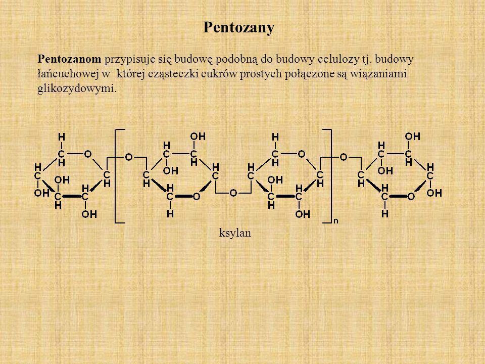 Pentozany