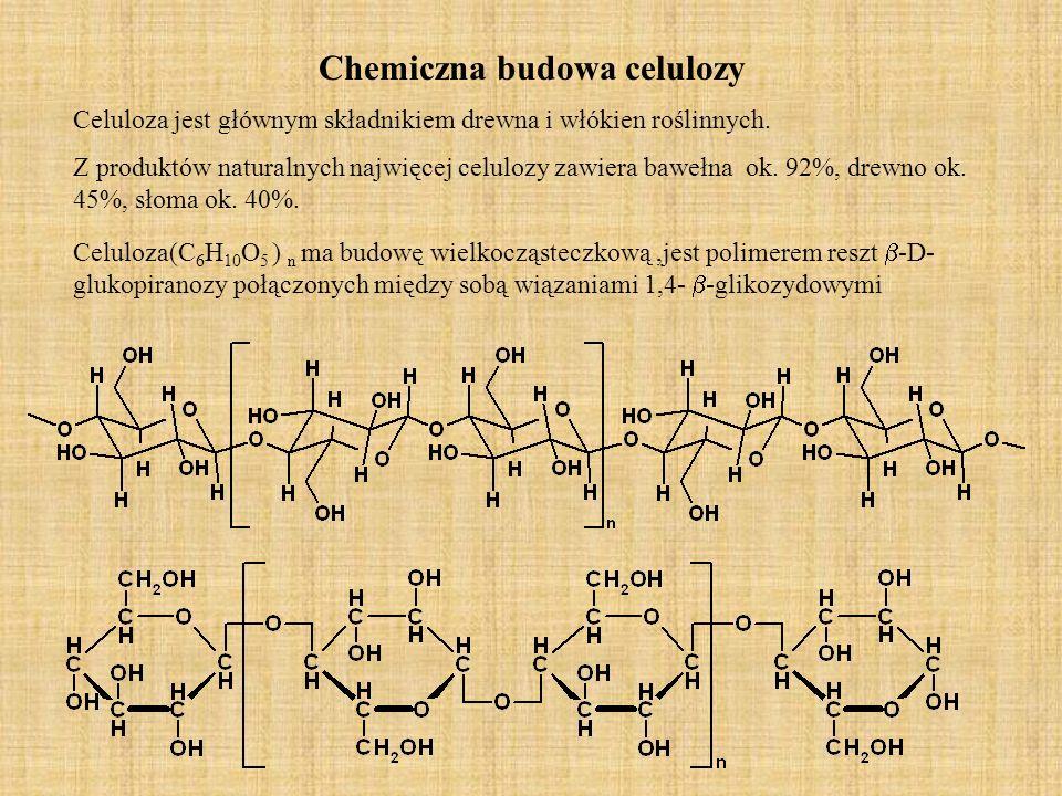 Chemiczna budowa celulozy