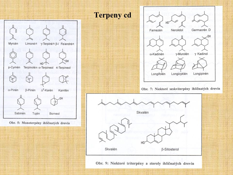 Terpeny cd