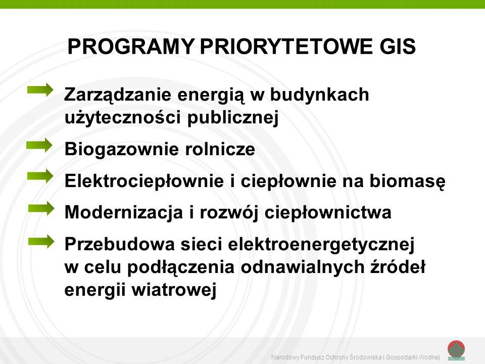PROGRAMY PRIORYTETOWE GIS
