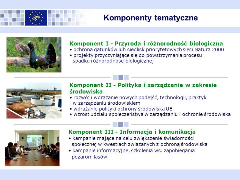 Komponenty tematyczne