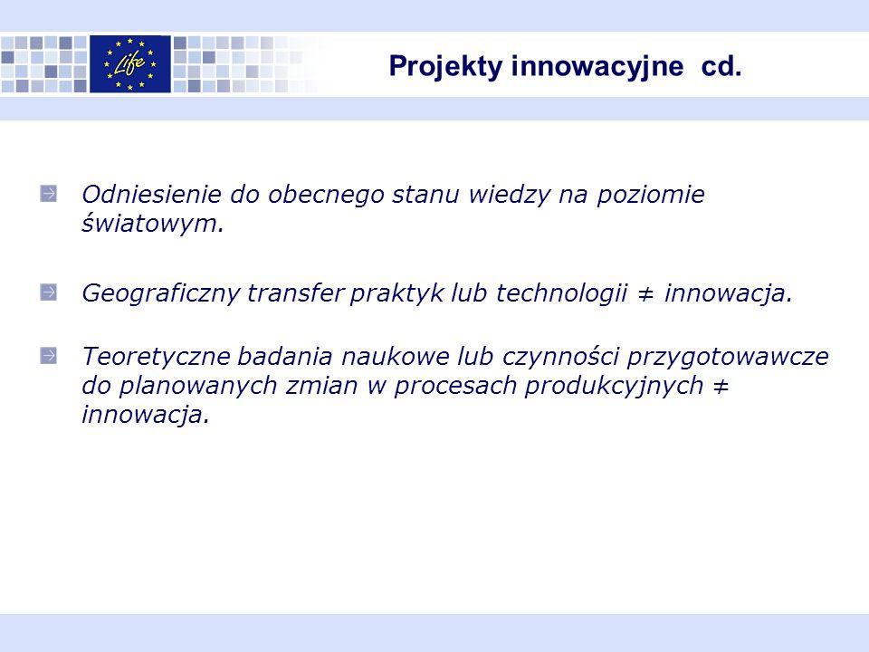 Projekty innowacyjne cd.