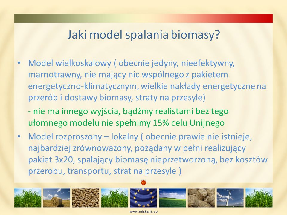 Jaki model spalania biomasy